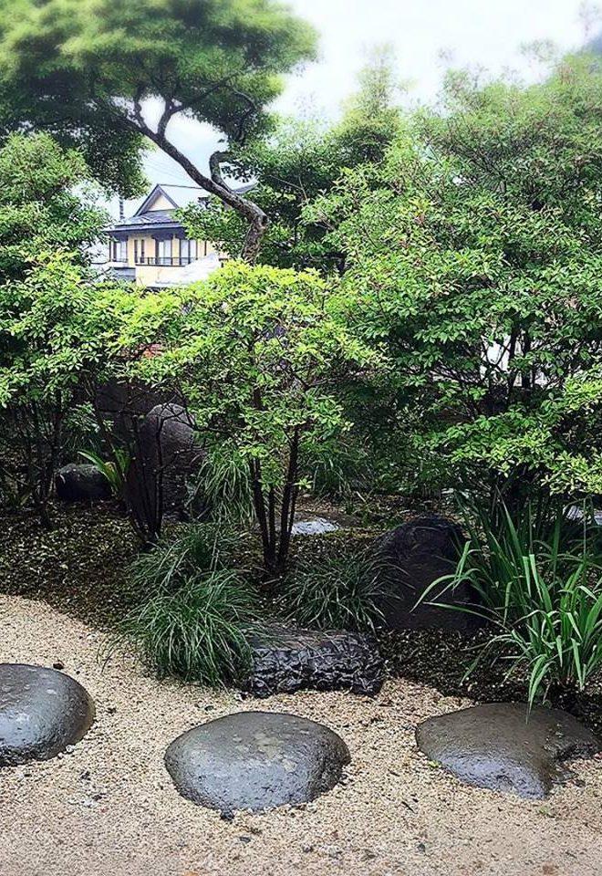 あやめ お庭 garden bloom