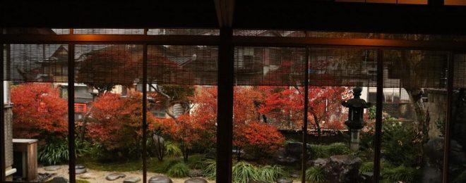 紅葉 庭 雨