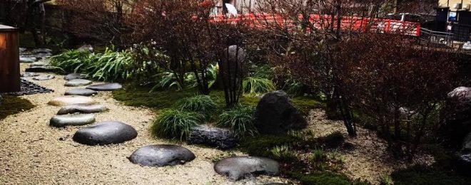 雨 苔 庭